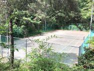 tennis court trees condo for sale portland oregon susie hunt moran realtor