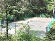 tennis court trees condo for sale portland oregon susie hunt moran realtor