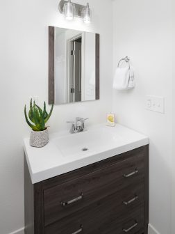 Lower level bathroom Midcentury remodeled home SE Portland