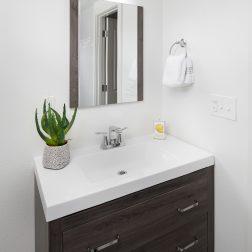 Lower level bathroom Midcentury remodeled home SE Portland