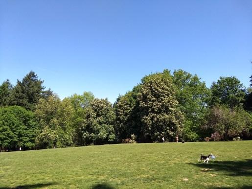 Creston-Kenilworth Park